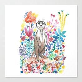 Meerkat Blom Canvas Print