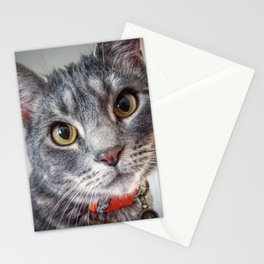 Lucky Ollie Archimedes Evans Stationery Cards