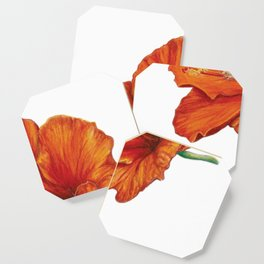 Hibiscus with Coqui Coaster