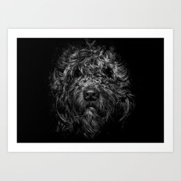 Ziggy Portrait No 1 Art Print