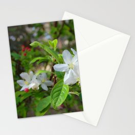 Garden Blooms Stationery Cards