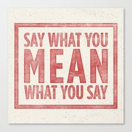 Say what you mean Canvas Print