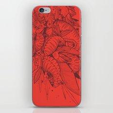 Feathered Nautilus iPhone & iPod Skin