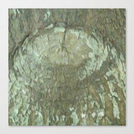 Oak Tree Eye Camo Canvas Print