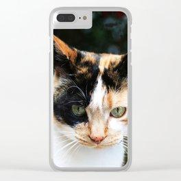 Sweet Cat Portrait Clear iPhone Case