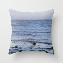 Shells in the sand 5 Throw Pillow