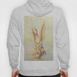 Hare Hypnosis Hoody