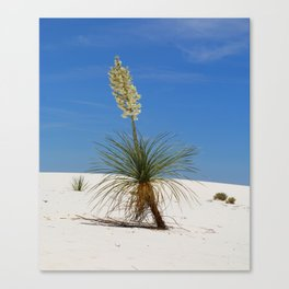 Living In The White Sand Dunes Canvas Print