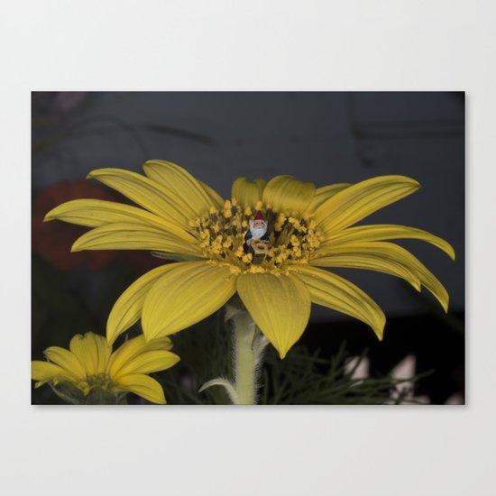 Gnome Flower Harvest Canvas Print