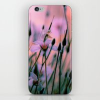 snatch iPhone & iPod Skins featuring Dawn  by The Dreamery