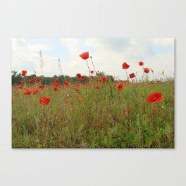 among weeds Canvas Print