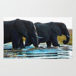 Elephants (Color) Rug