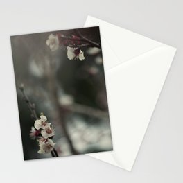 Apricot tree I Stationery Cards