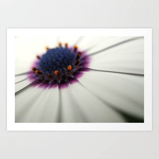 Roses are red, Violets are white..? Art Print