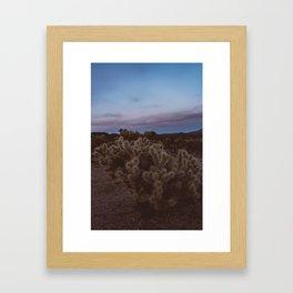 Cholla Cactus Garden VIII Framed Art Print