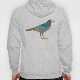 Its a bird Hoody