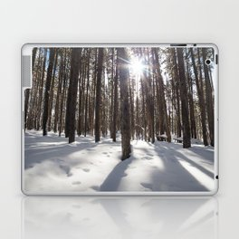 Yellowstone National Park - Lodgepole Forest 2 Laptop & iPad Skin