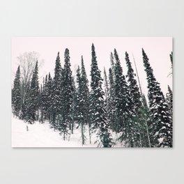 Winter day 11 Canvas Print