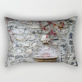 Acqua Potabile Rectangular Pillow