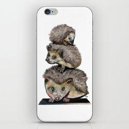 Need Space iPhone Skin