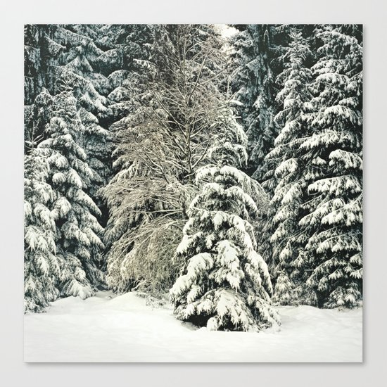 Warm Inside Canvas Print