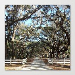 Savannah, Georgia Canvas Print