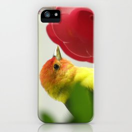 Taninger, male2 iPhone Case