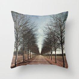Danish road Throw Pillow