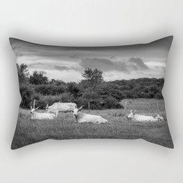 Siesta Rectangular Pillow