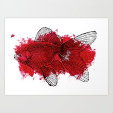 big red fish Art Print