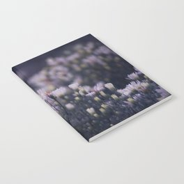 Dreamy daisies Notebook