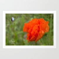 poppy Art Prints featuring Poppy by Fine Art by Rina