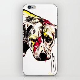 The sadness of streetdogs iPhone Skin