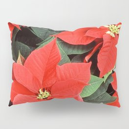 Beautiful Red Poinsettia Christmas Flowers Pillow Sham