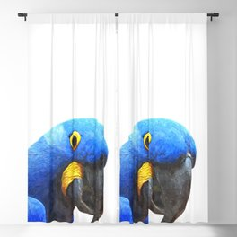 Blue Parrot Portrait Blackout Curtain