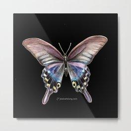 Tiger Swallowtail Butterfly - Black Metal Print