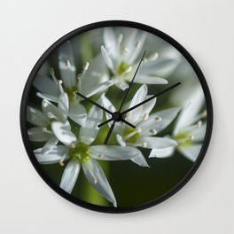 The beauty of the white Wall Clock