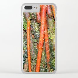 The Strong red ROOTS of The Sierra Palm in El Yunque rainforest PR Clear iPhone Case