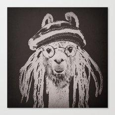 Funky Llama Canvas Print