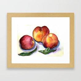 Early Summer Peaches Framed Art Print