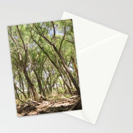San Pedro River Bank Stationery Cards