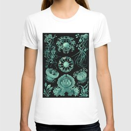 Ernst Haeckel Ascomycetes Sac Fungi T-shirt