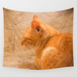 Orange Cat Is Resting On The Terrace  #decor #society6 #homedecor Wall Tapestry