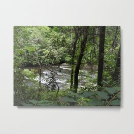 Abrams Creek Metal Print