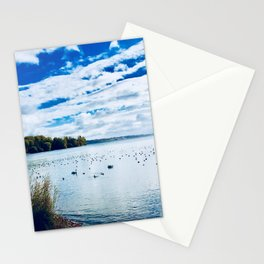 Swan Family Photograhy Stationery Cards