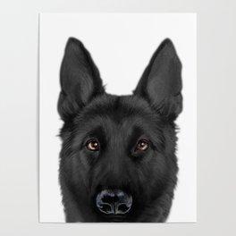 Black German Shepherd, Original painting by miart Poster