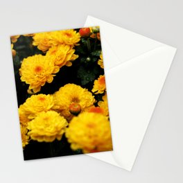 Golden Dew Drops II. Stationery Cards
