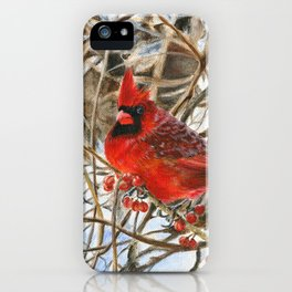 Winter Cardinal by Teresa Thompson iPhone Case