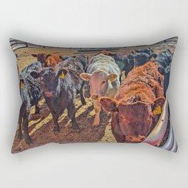 Last Year's Calves Rectangular Pillow