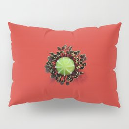 Red Poppy Flower Core Macro Pillow Sham